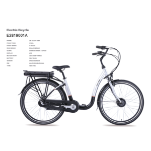 Electric Bicycle with Pedal Assist