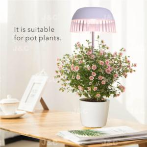 MG-TG-004 USB grow light USB charging  height adjustable  simple design  transparent skirt design  stylish light effect anti-glaring indoor decoration  big pot grow led