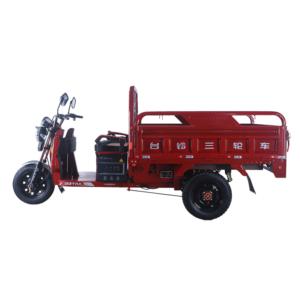 Jin Fu tricycle