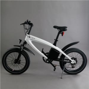 Lehe S2 fat tire electric bike
