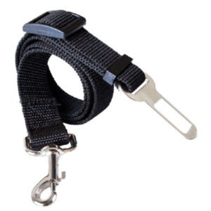Pet Leash with Metal Studs