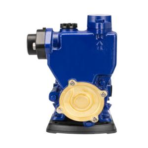 Automatic AC 220v vortex clean water pressure booster pump for home