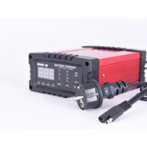 6V / 12V 2/8/12/25A High frequency Double voltage battery charger