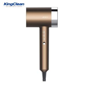 Hair dryer with BLDC motor