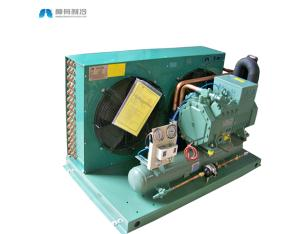 Air cooled compressor condensing unit with BITZER reciprocating compressor for cold room