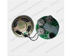 Recordable Sound Chip, Voice Chip, Music IC