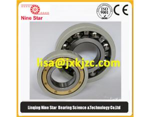 6312-J20AA-C3 insulated bearing