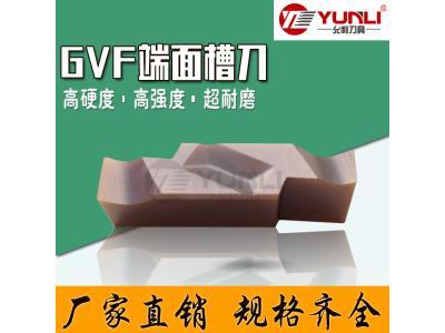 GVFR200-020A GVFL350