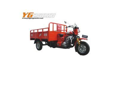Yingang Tricycle--YG200ZH