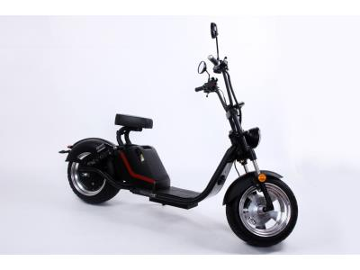 Big Promotion Nice Shape Luqi Electric Bicycle with Double Disc Brakes