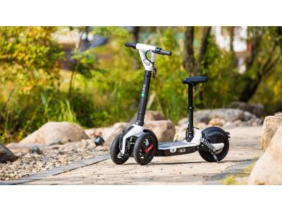 iLark E-scooter