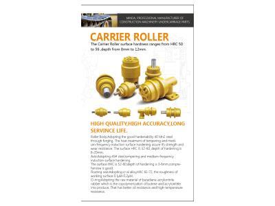 CARRIER ROLLER