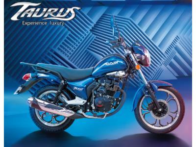 Taurus HJ25-22