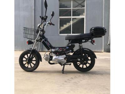 Mini Moto Economic Gasoline Bike