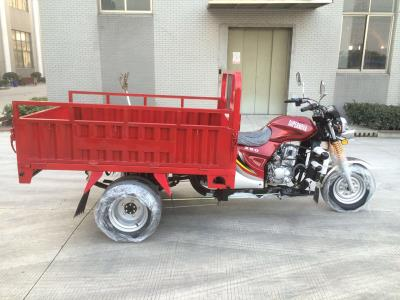 One Ton EEC Heavy Loading Cargo Tricycle with Double Rear Tyres