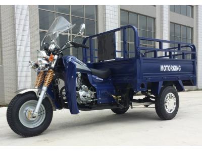 Economic 150cc Gasoline Cargo Tricycle
