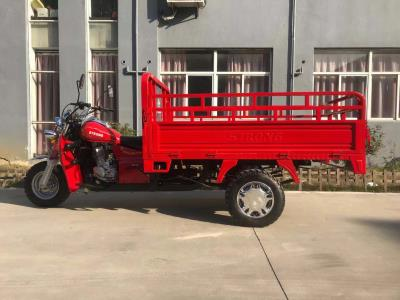 STRONG Gasoline Cargo Tricycle