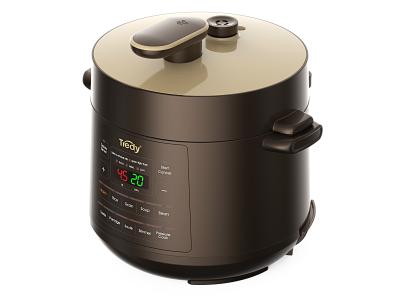 E series Electric Pressure Cooker (2-4L)