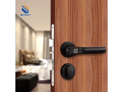 Smart Lock Fingerprint Lock Digital Smart Home Door Lock Matte Black-R665F-00