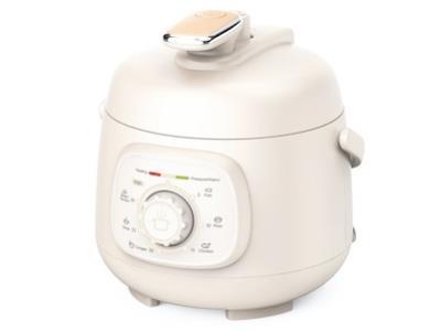 50C Electric Pressure Cooker(1.6L)