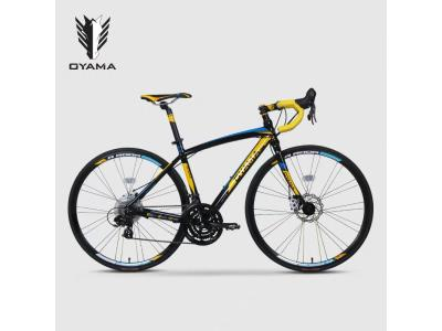 China professional bicycle manufacturer 21 speed road bike adult 700C bicicletas
