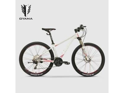 Factory wholesale mountain bike 27.5