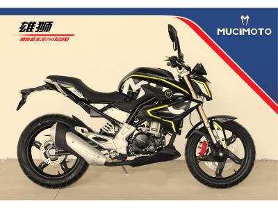 MOTORCYCLE XS-125/150/200