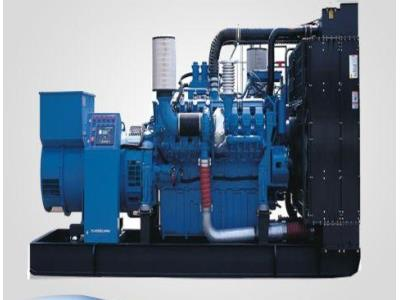 800kw 1000kVA MTU Diesel Generator Set