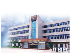 NEW NANFANG ELECTRICAL APPLIANCE CO., LTD.
