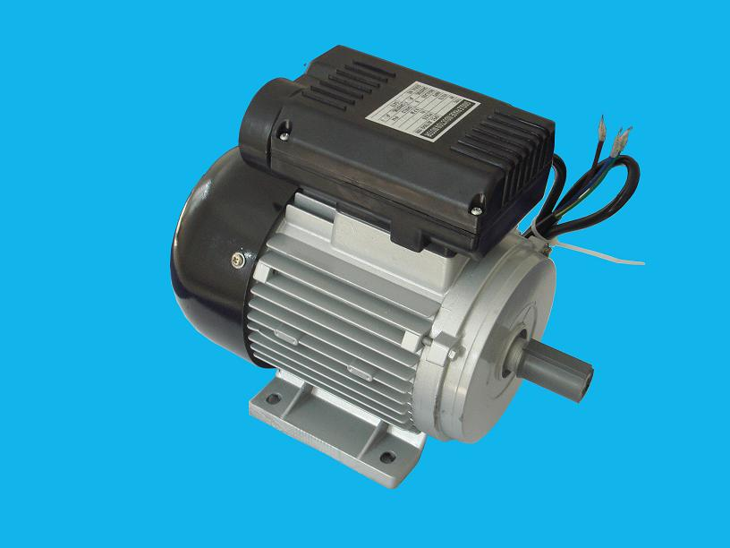 Taizhou Dongye Electric Motor Co Ltd