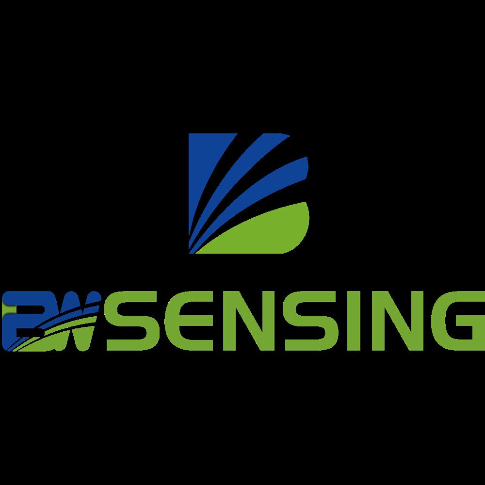 Wuxi Bewis Sensing Technology LLC