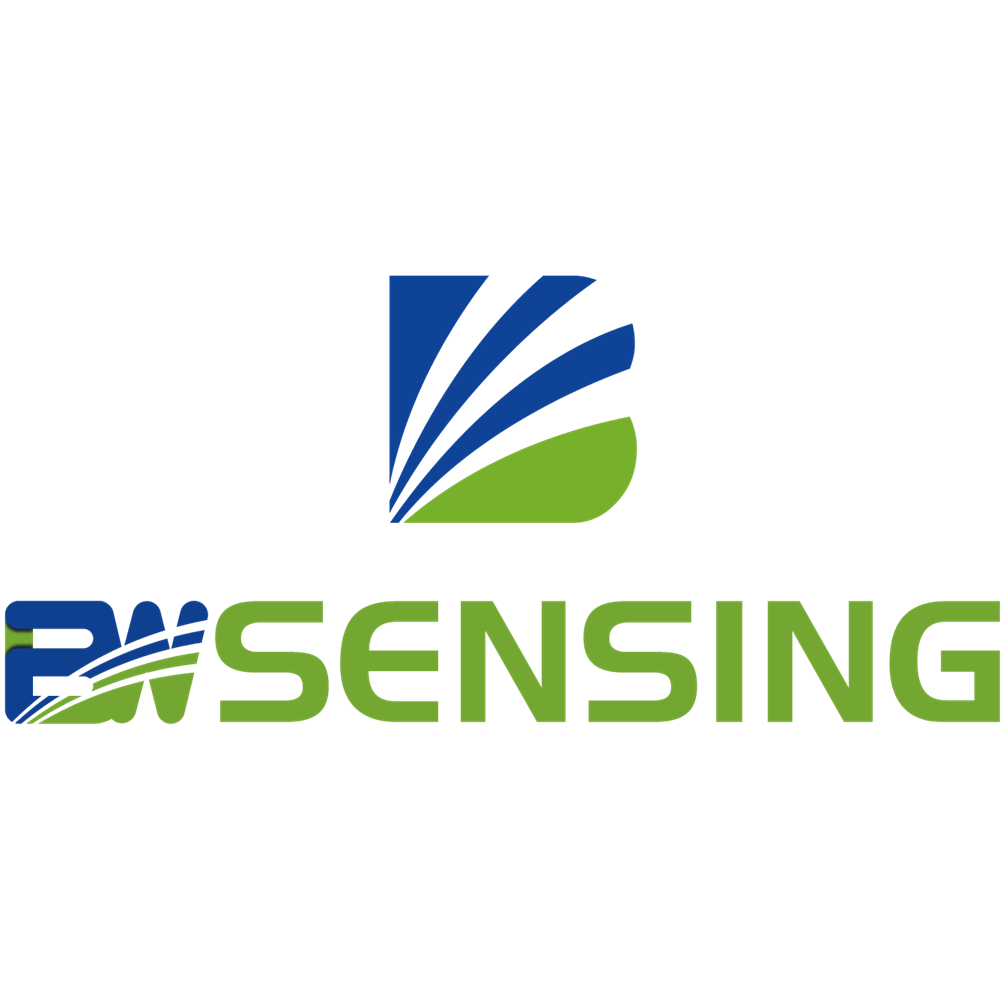 Wuxi Bewis Sensing Technology LLC