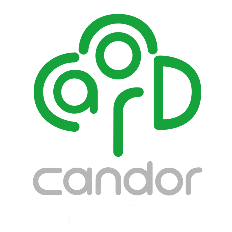 ZHONGSHAN CANDOR ELECTRIC APPLIANCES CO.,LTD.