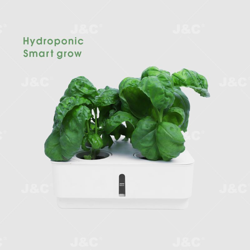 J&C hydroponic box budding box self watering planter visible water stage watering hole  with lid with budding lid  4 holes planting box  sustainable use