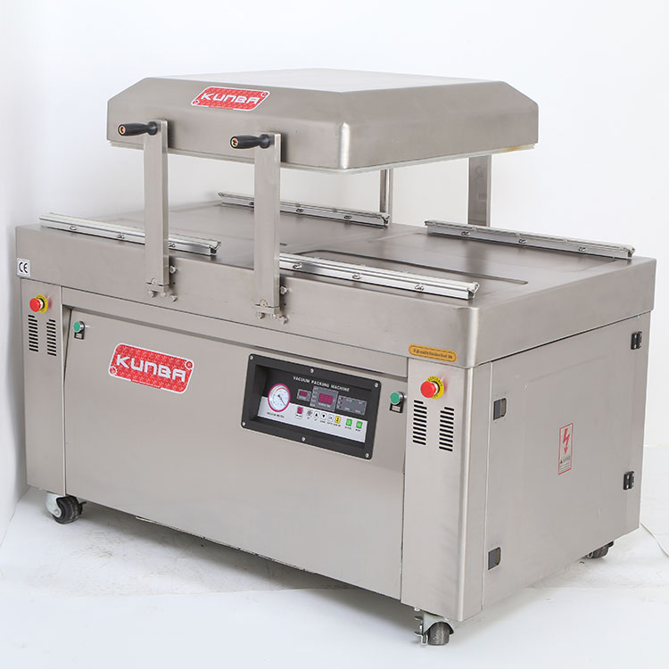Vacuum Packing Machine DZ-600/2SA (Automatic Flip)