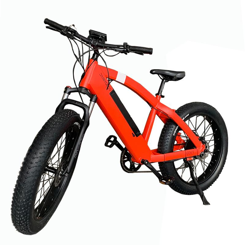 Electric snow beach bike