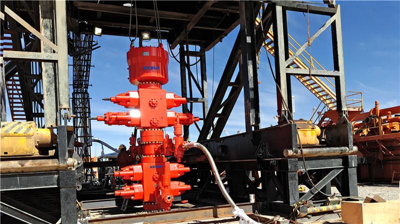 Wellhead and Well Control Equipment