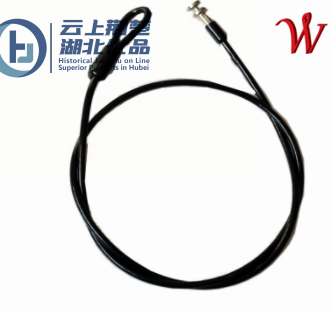 Stainless Steel Wire Rope Assembly with Fittings for Security Lock