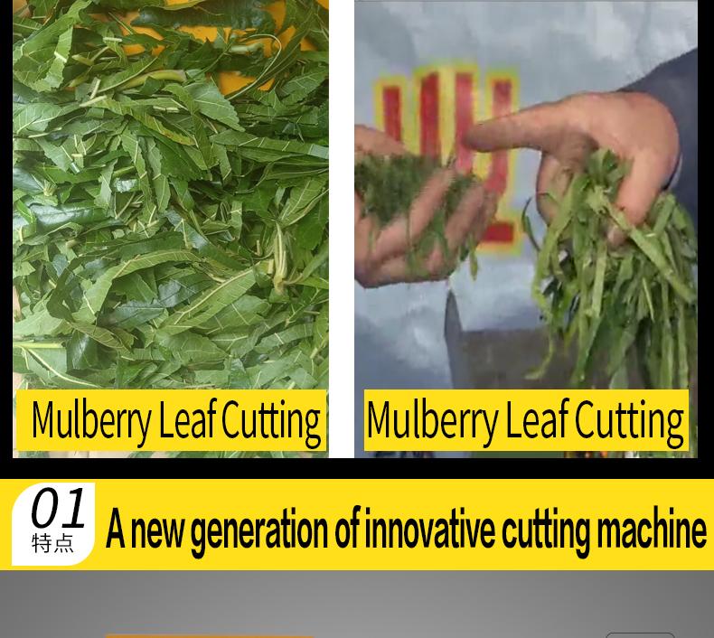 Mulberry leaf chopper-93QS0.2-03.jpg