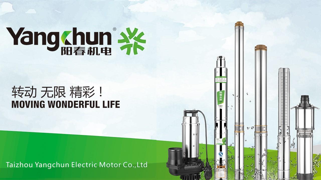 Taizhou Yangchun Electric Motor Co., Ltd.