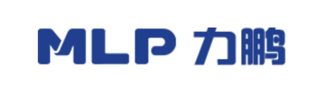 Ruian Lipeng automotive motor Co., Ltd.