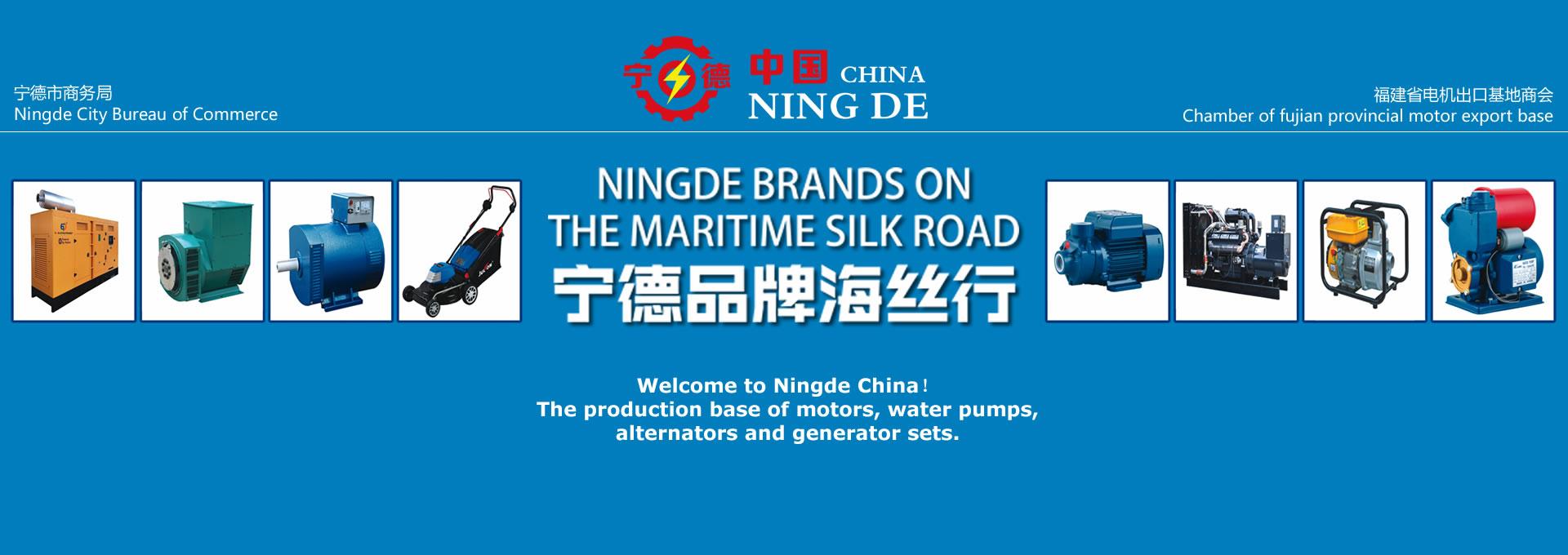 Ningde Export Online Fair 2021 (Power & Energy Station)